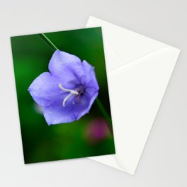 Harebell Stationery Cards
