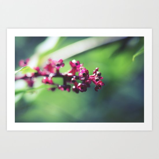 Botanical Cluster Art Print
