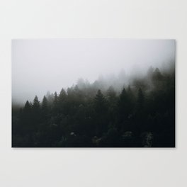 Into the Wild IV / California Canvas Print