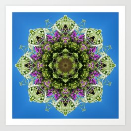 Intricate floral kaleidoscope - Vebena, Dichondra leaves with blue sky Art Print
