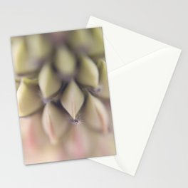 Wolfish Stationery Cards