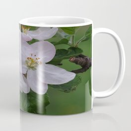 Apple tree flowers 3 Coffee Mug
