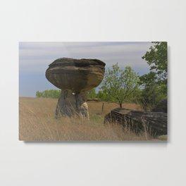 Kansas Mushroom State Park Metal Print