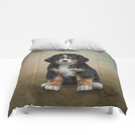 Drawing puppy Bernese Mountain Dog Comforters