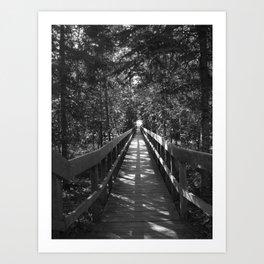 Kettle Falls Art Print