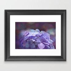 butterflies flower Framed Art Print