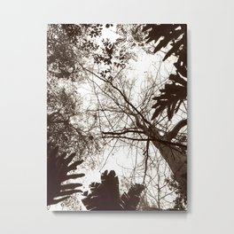 Memories of Endor 1 (B&W) Metal Print