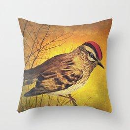 Bird Look Throw Pillow
