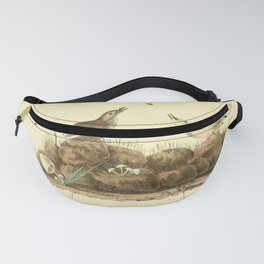 American Pipit or Titlark8 Fanny Pack