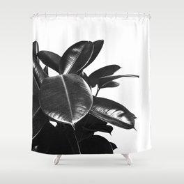 Black Ficus Elastica Shower Curtain