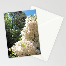Crisp Afternoon Stationery Cards
