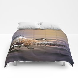 The Return Comforters