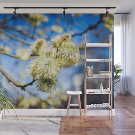 Willow Buds On A Sunny Day Wall Mural