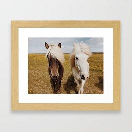 Icelandic Horse #3 Framed Art Print