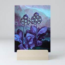 Lavender Periwinkle Mint Auriculas : Temple of Flora Art Print Mini Art Print