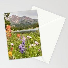 Wildflowers by Irwin Lake, Colorado Stationery Cards