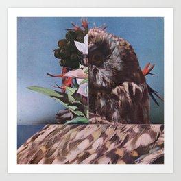 half owl Art Print