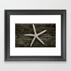 Starfish on Driftwood Framed Art Print