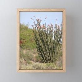 Jacobs Ladder Coachella Valley Wildlife Preserve Framed Mini Art Print