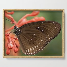 Butterfly On A Flower Serving Tray