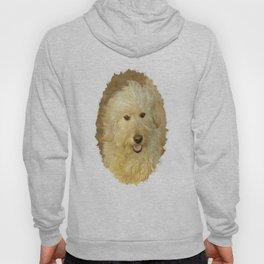 Dog Goldendoodle Golden Doodle Hoody