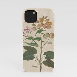 Honesty - botanical iPhone Case