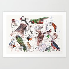 Birds and other animals Art Print