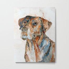 DOG#12 Metal Print