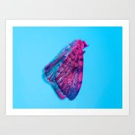 Bugged #12 Art Print