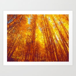 The Golden Forest by Sunshine Art Print