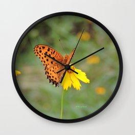 Ms. Indian Fritillary at West Lake Wall Clock
