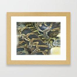 Golden Boa Framed Art Print