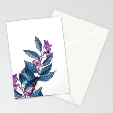 Botanical study of a coffee branch Stationery Cards