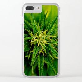 Marijuana Clear iPhone Case