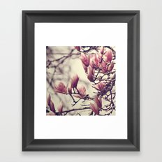 Magnolia II Framed Art Print