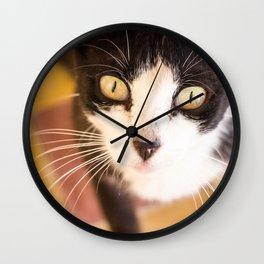 Desert Cat Wall Clock