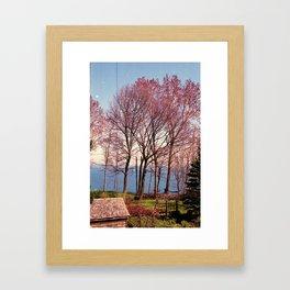 Fire Red Trees Framed Art Print