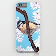 Cyanistes caeruleus iPhone 6s Slim Case
