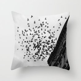 Chaos Theory: Applied Throw Pillow