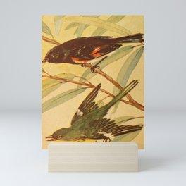 Vintage Print - Redstart & Pine Warbler Mini Art Print
