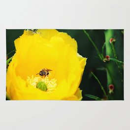 Cactus Flower, Bee and Grasshopper Rug