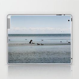 Sea ducks Laptop & iPad Skin