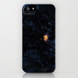 Bokeh thorns iPhone Case