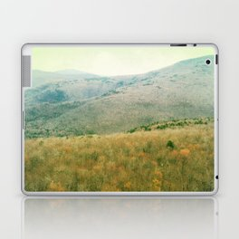catskills3 Laptop & iPad Skin