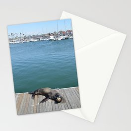 Sea Lion Smile Stationery Cards