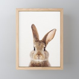 Baby Rabbit, Baby Animals Art Print By Synplus Framed Mini Art Print