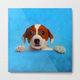 Cute Jack Russell Terrier Puppy Metal Print