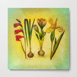 Garden Bulbs Metal Print