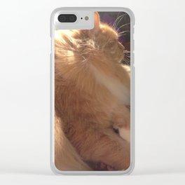 Wind In My Fur Clear iPhone Case