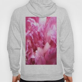 Pink Flower Petals Close-up #decor #society6 #homedecor #buyart Hoody